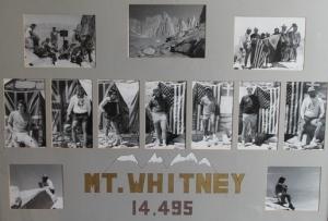 whitneyX350